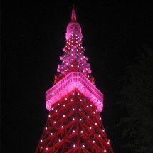 Japan_PinkTokyoTower